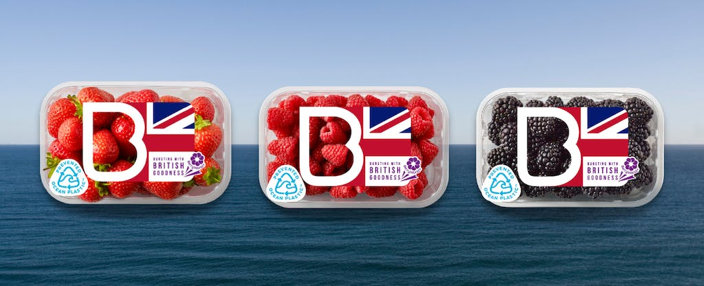 BW UK Sustainable Berry Packaging mtime20210512155115