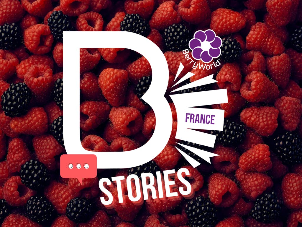 Berry World France stories