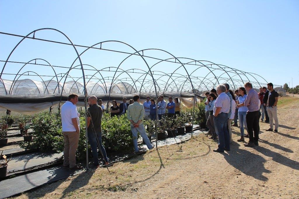 Berry World Spain organises fruitful third Grower Day mtime20190617071347