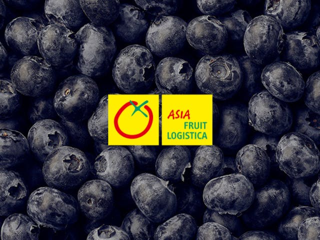 BerryWorld at Asia Fruit Logistica