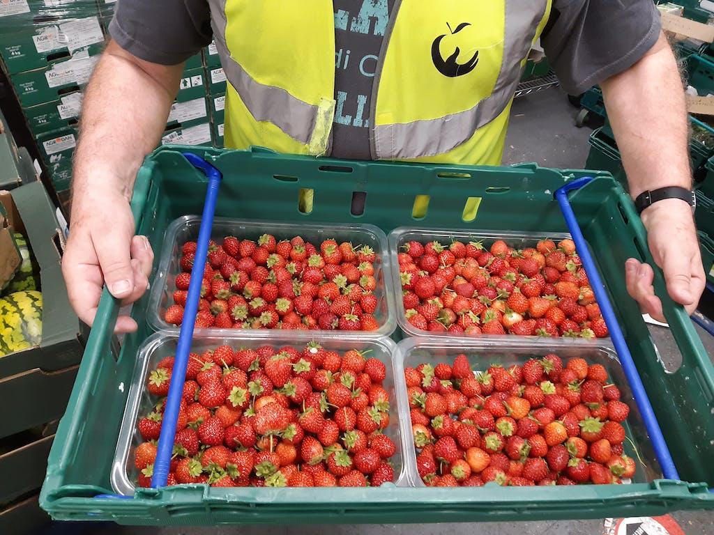 R J Emery strawberries July 2020 3 of 3 1