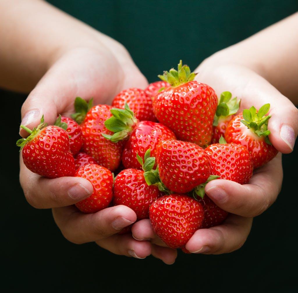 Visuel point info fraises