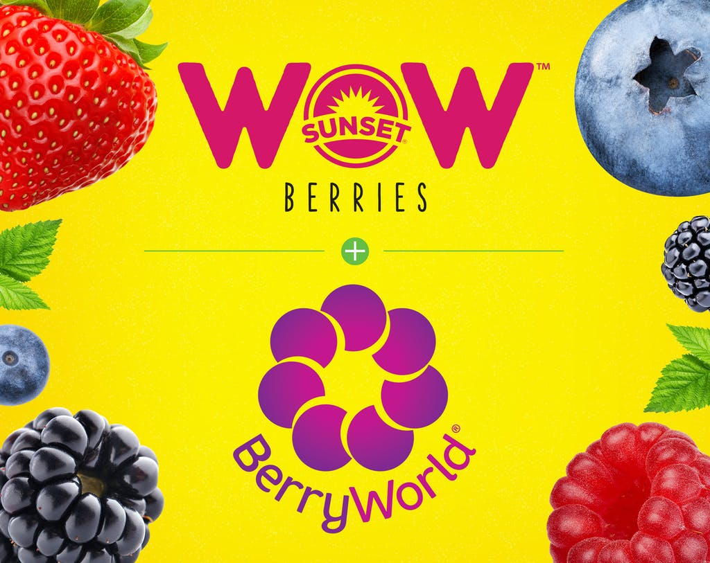 WOW Berry World Square mtime20180906144322