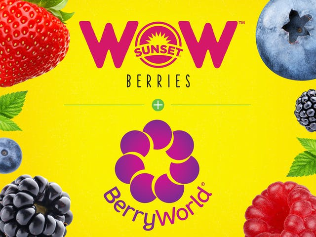 SUNSET® Partnership About to Rock the BerryWorld®