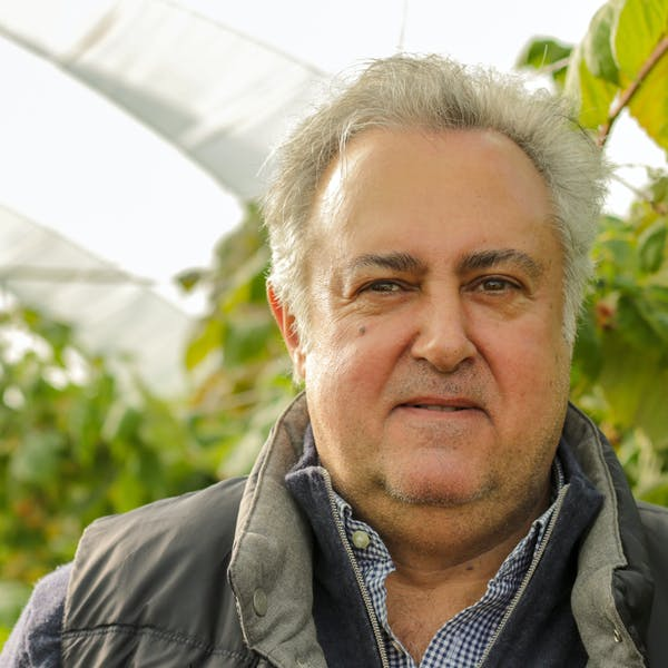 Fransico Crop